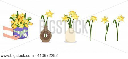 Hands Hold A Round Box Of Flowers. Bouquet Delivery. Daffodils In A Vase. Set Of Spring And Summer P
