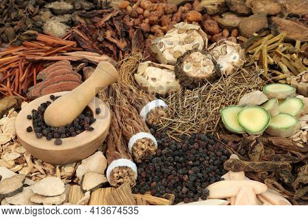 Chinese alternative herbal medicine with a collection of herbs and  spices. Traditional health care concept.