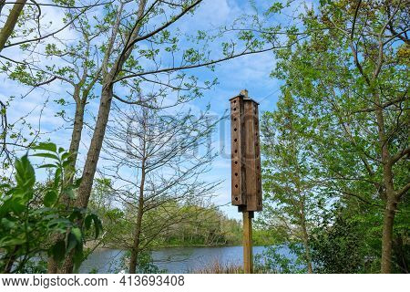Elongated Bird House Structure With Multiple Portals