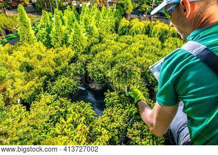Professional Caucasian Gardener In His 30s Looking For Best Rockery Plants For His Clients Garden Pr