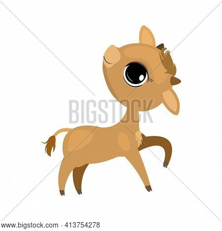 Little Calf Calf. Cow Or Bull. Isolated Object On A White Background. Cheerful Kind Animal Child. Ca