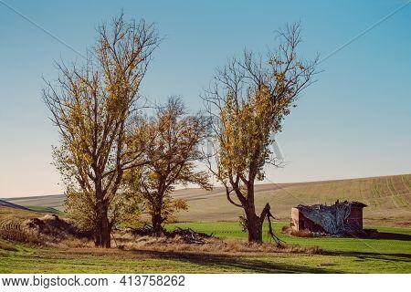 Abandoned Barn Landscape - Endicot, Washington Palouse