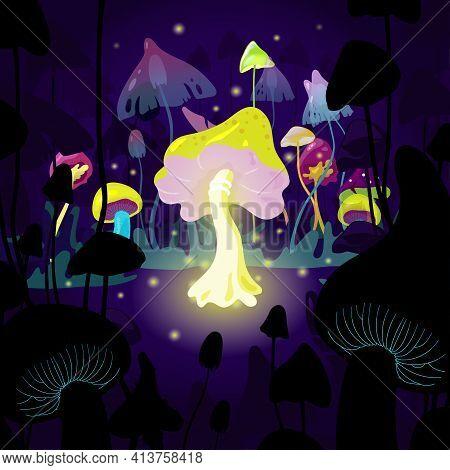 Magic Mushrooms - Mystery Landscape Of Secret Forest
