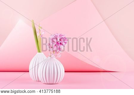 Airy Soft Light Exquisite Pink Hyacinth Flowers In Vase With Sunbeam, Sun Flare On Pastel Pink Backg