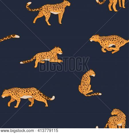 Fast Cheetah Or Leopard Running Or Hunting Animal