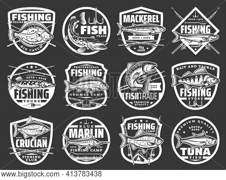 Fishing Vector Icons With Fishes Sea Flounder, Pike, Mackerel And Sprat, Carp, Salmon With Perch Wit