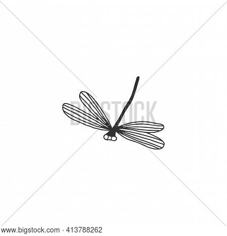 Vector Hand Drawn Illustration. Minimal Insect Icon, A Dragonfly, Flier.