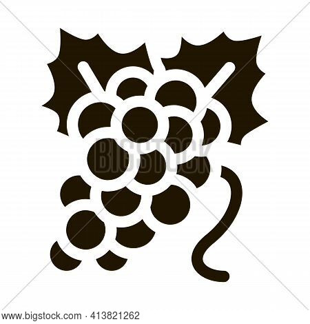 Bunch Of Grapes Glyph Icon Vector. Bunch Of Grapes Sign. Isolated Symbol Illustration
