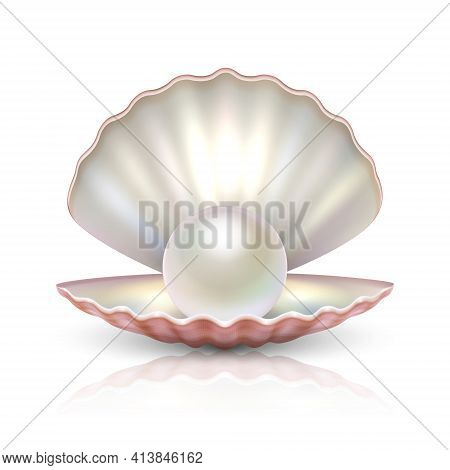 Vector 3d Realistic Beautiful Natural Opened Pearl Shell With Pearl Inside Icon Closeup Isolated On
