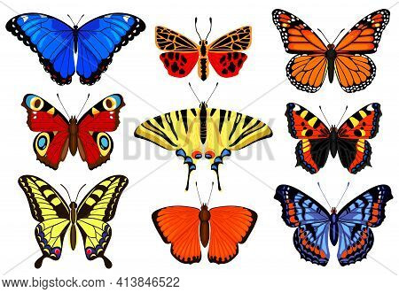 Cartoon Butterflies. Flying Colorful Insects, Spring Butterfly Moth Insect, Summer Garden Flying But