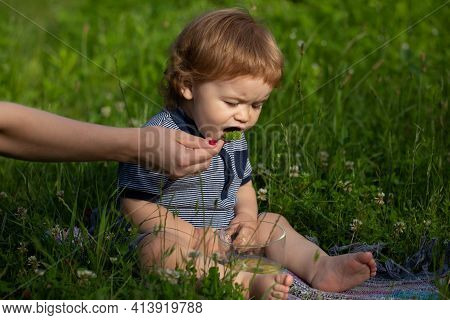 Feeding Baby. Mothers Hand Feeding Baby With A Spoon. Summer Ration, Childcare. Good Morning On The
