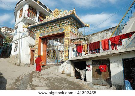 Rewalsar,himachal Pradesh, India - December 10: Buddhist Monk Entering Zigar Drikung Kagyud Institut