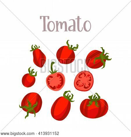 Juicy And Fresh Tomatoes Of Different Varieties. Healthy Nutrition Product.