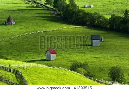 Summer afternoon in North of Romania