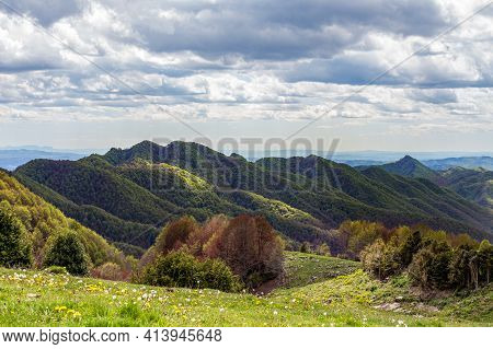Green Mountain Peaks Partially Lit By The Sun. Forest And Green Meadow In The Foreground. Catalunya,