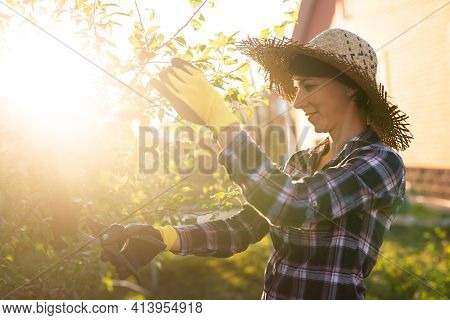 Side View Of Focused Young Caucasian Woman Gardener Cuts Unnecessary Branches And Leaves From Tree W