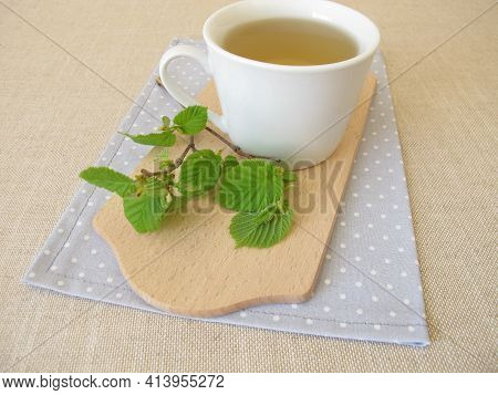Hazelnut Leaf Tea And A Twig With Young Hazel Leaves