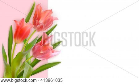 Bouquet Of Realistic Tulips On A Pink Background. Composition Of Pink Tulips Buds. Template For Invi