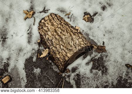 Malted Wooden Log In A Pond Of Water Ice. Snow Covered Pond Ice. Winter Landscape