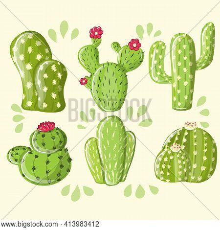 Collection Desert Plants Cactus Set Vector. Different Succulent Prickly Spine Cactus Exotic Nature D