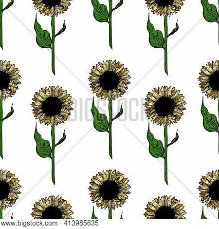 Seamless Pattern Sunflower Flower Line Art. Black, White And Yellow Illustration Of A Sunflower. Han