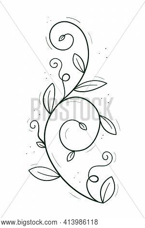 A Climbing Plant Like A Pea Or Creeper With Tendrils And Leaves. Doodle Sketch Outline Black And Whi