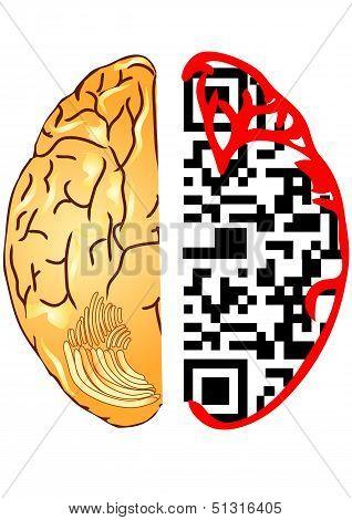 Brain And QR Code