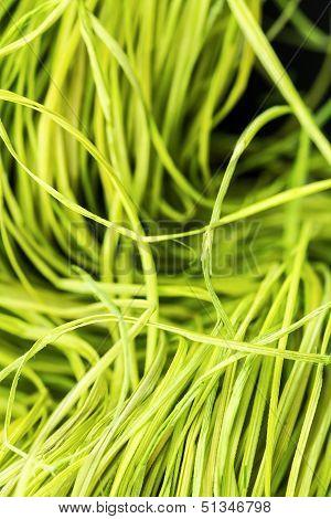Straw Close-up Background