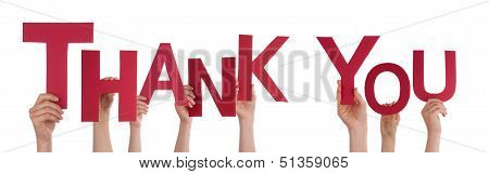 People Holding Thank You