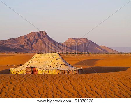 Oasis On The Desert, Morocco