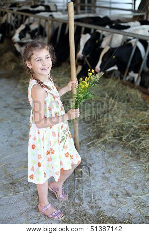 Little girl with flowers and hayfork stands at cow farm and looks away.