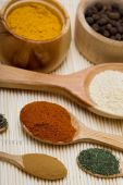 many colored different spices in wooden spoons poster