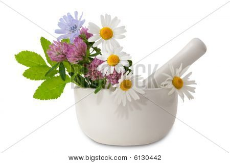 Herbal medicine (healing herbs, mortar and pestle), isolated on white poster