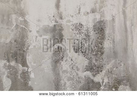 Grey old wall Texture
