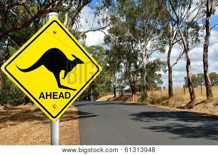 Kangaroo Warning Road Sign