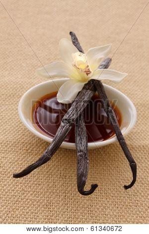 Bowl of Vanilla Extract and Dried Vanilla Beans