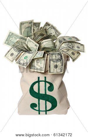 Moneybag Full of Cash