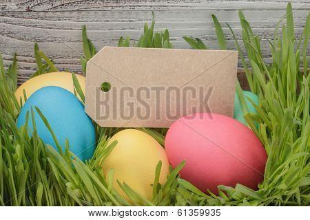 Easter Eggs Hiden In Grass Border Composition