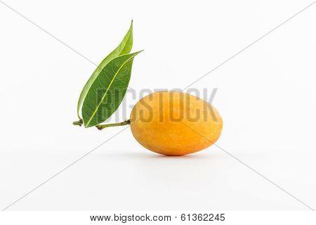 Sweet Marian Plum Fruit.
