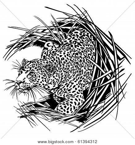 Panther animals wild theme illustration art vector. poster