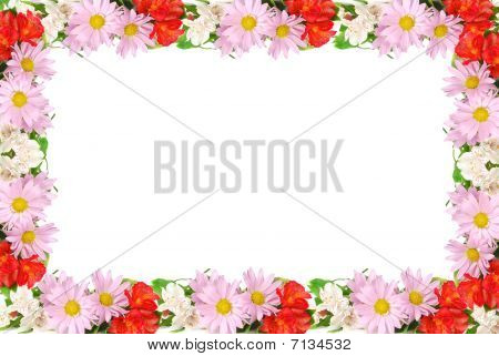 Colourful Summer Flowers Frame