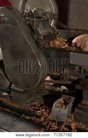 Tobacco Cut Manufacturing