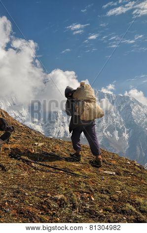 Sherpa In Himalayas