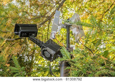 Security camera pole