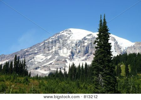 Snow covered summit of Mt. Rainier