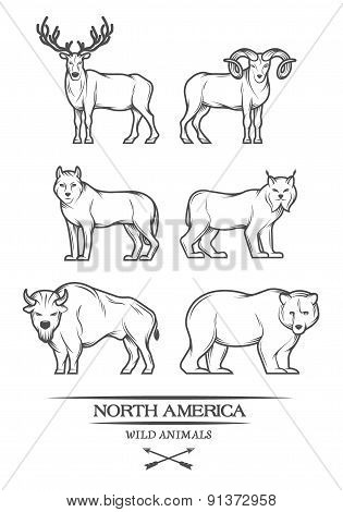 Animals in North America.