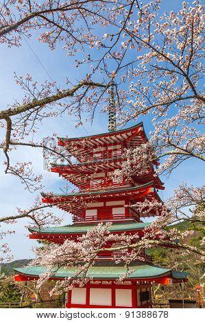 Chureito Pagoda in spring season Fujiyoshida, Japan