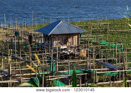 Fish Farm At Lake Tondano