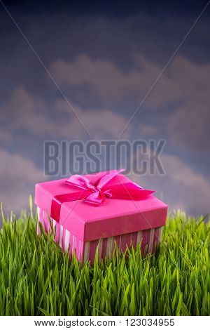 Birthday gift box on the green grass