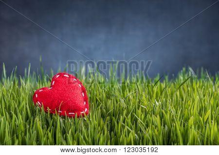 Love concept of felt red heart on green grass